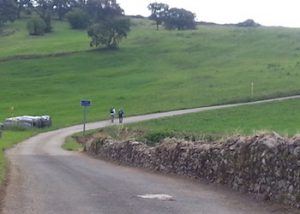 Camino de Santiago km